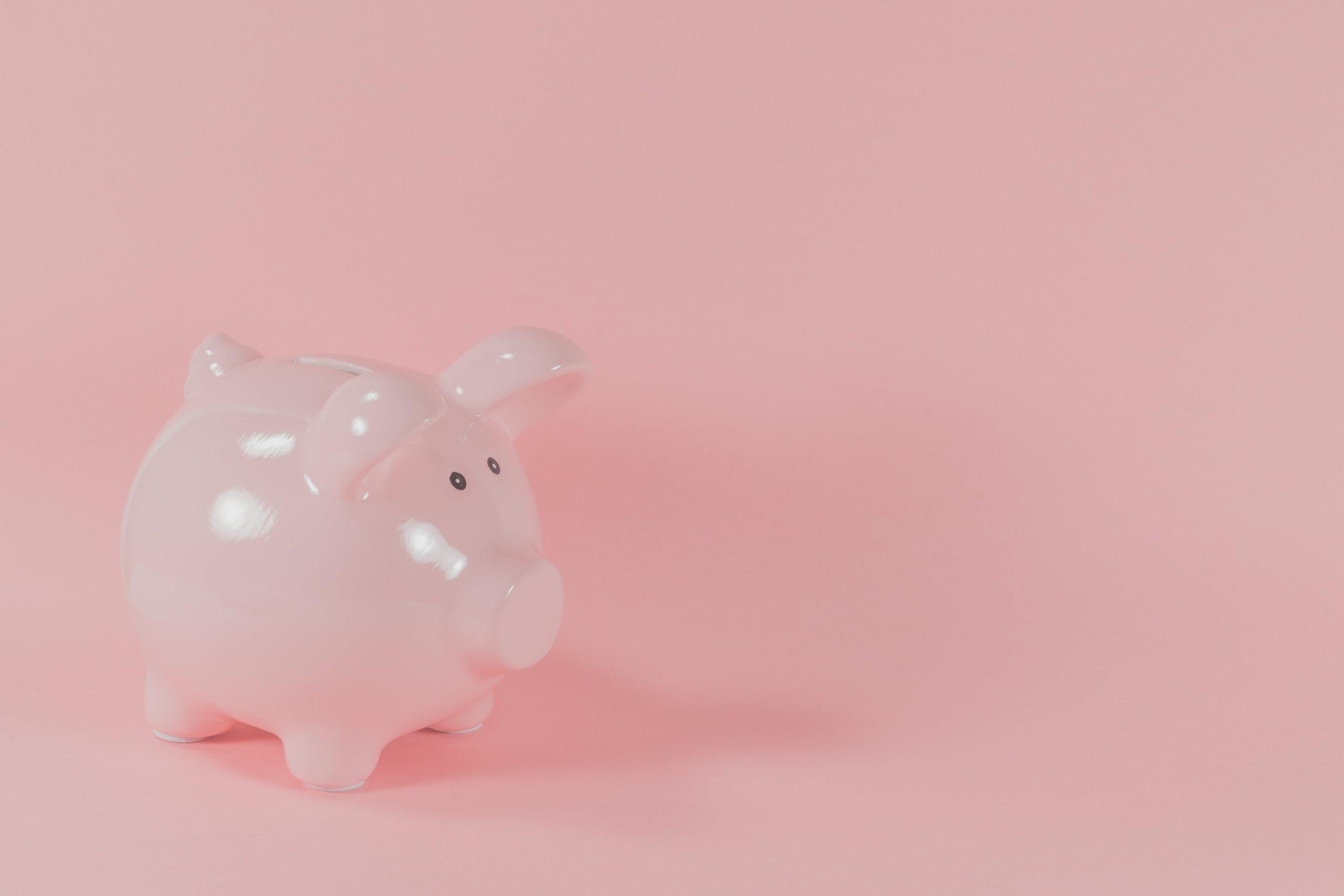 spaarvarken roze